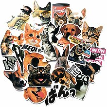 Personalized Pet Cats And Dogs Decoration