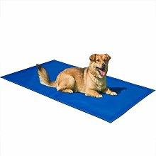 Pet Dog Cooling Mat Blue Symple Stuff Size: 60cm W