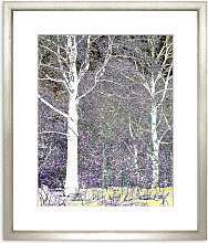 Peter Neumann - Abstract Forest Framed Print &