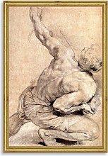 Peter Paul Rubens - Study of Back Wood Framed