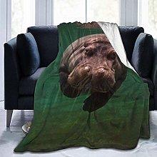 Peyolad Diving Hippo Printing Blanket Plush Throw
