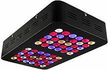 PIAOLING Plant Grow Light LED 300W Full Spectrum
