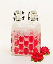 Picars Drinks Cooler (Holds 4Bottles/Jars,