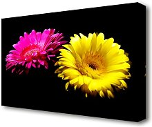 Pink And Yellow Gerbera Delight Flowers Canvas