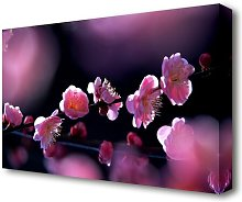 Pink Blossom Flowers Flowers Canvas Print Wall Art