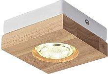 PJDOOJAE Beautifully Downlight Solid Wood