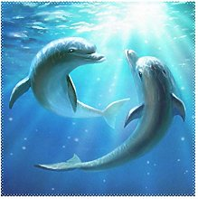 Placemats Dolphins Underwater Blue Ocean Sea 12x12