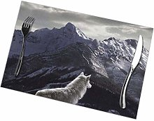 Placemats Set of 6 Heat-Resistant Placemats Stain
