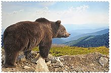 Placemats Set of 6 PVC Big Brown Bear Dining Table