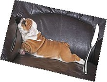 Placemats Set of 6 PVC Cute Bulldog Dining Table