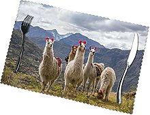 Placemats Set of 6 PVC Llamas in The Andes Dining