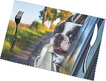 Placemats Set of 6 PVC Puppy Dog Boston Terrier