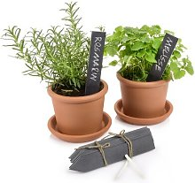 Plant Sign Decorative Accessory Sänger Size: