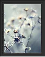 Plants with Frost Framed Photographic Art Print