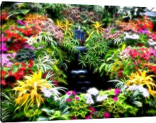 Plants with Small Waterfall Photographic Print on