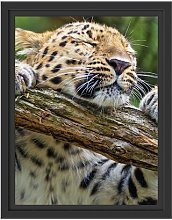 Playful Leopard Framed Art Print East Urban Home