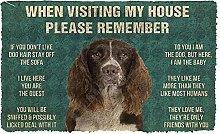 Please Remember 3D English Springer Spaniel Dogs