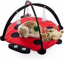 PLUS PO Kitten Toys Cats Toys Cat Toys Balls