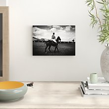 Polo Horse Photographic Print Big Box Art