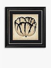 Pop Floral III Framed Print & Mount, 56 x 56cm,