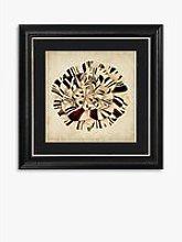 Pop Floral V Framed Print & Mount, 56 x 56cm,
