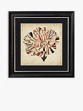 Pop Floral VI Framed Print & Mount, 56 x 56cm,
