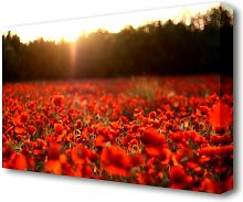 Poppies Meadow Flowers Canvas Print Wall Art East