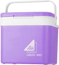 Portable 10L Car Refrigerator Ice Bucket Mini