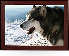 Portable Lap Desk Tray (Alaskan Malamute Dog)