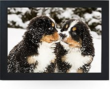 Portable Lap Desk Tray (Bernese Mountain Puppies)