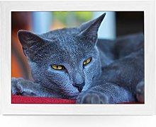 Portable Lap Desk Tray (Chartreux Cat) Handmade