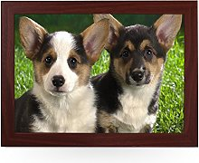 Portable Lap Desk Tray (Corgi Puppies) Handmade