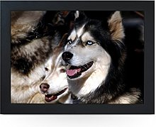 Portable Lap Desk Tray (Husky Dogs) Handmade