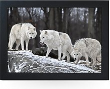 Portable Lap Desk Tray (Three White Wolves)