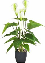 Potted Artificial Calla Lily Plant, Soft Plastic