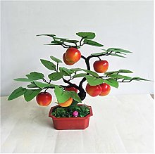 Potted Plants Artificial Artificial Orange Tree