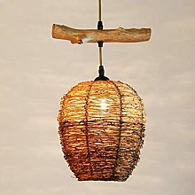 Practical Family Simplicity Vintage Hanging Light
