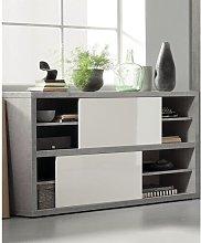 Pratico 2 Door Storage Cabinet Brayden Studio