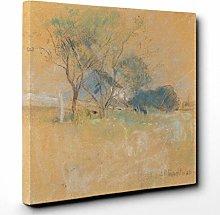 Premium Canvas Print (20x14 Inch / 50x35cm) Frog 3