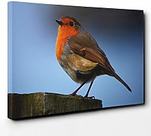 Premium Canvas Print (20x14 Inch / 50x35cm) Robin