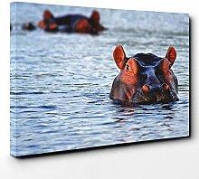Premium Canvas Print (30x20 Inch / 76x50cm) Hippo