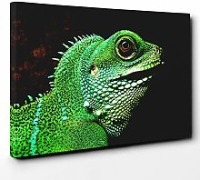 Premium Canvas Print (30x20 Inch / 76x50cm) Iguana
