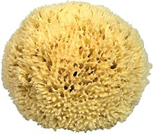 Premium Quality Natural Sea Sponge (Approx.