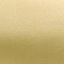 PRESTIGE Tiny Grain Soft Leather/Leatherette