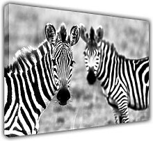 PRINTING PHOTO CANVAS WALL ART PICTURES WILD