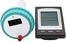 Professional Wireless Digital Swimming Pool SPA