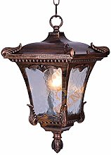 Pumnple Outdoor Lighting Pendant Light Traditional