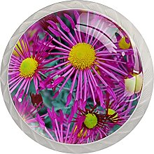 Purple Aster 4PCS Round Shaped Door Knobs Cabinet