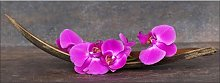 Purple Orchid III Rectangular Photographic Print