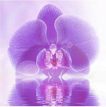 Purple Orchid on Water Semi-Gloss Wallpaper Roll
